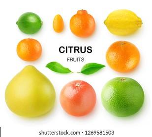 Isolated citrus fruits. Pomelo, grapefruits, orange, lemon, clementine, kumquat, lime and mandarin isolated on white background with clipping path