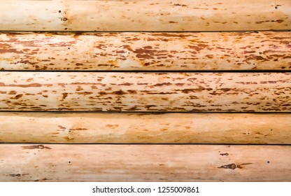 Isolated closeup of a simple exterior wall made of five horizontally stacked wooden logs, smooth, without bark and with a natural stain finish.