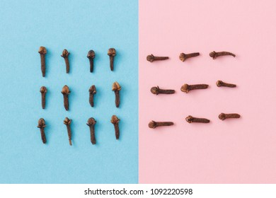 Isolated cloves shot from above sorted into three rows on a pastel blue and pink background. There is contrast between both halves.