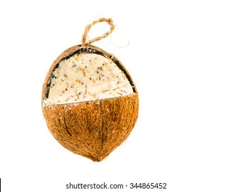 Isolated cocunut fat feeder for birds