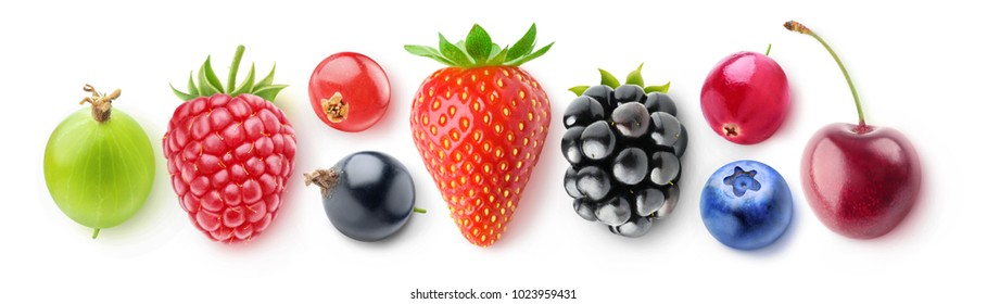 Isolated collection of berries, top view. Fresh strawberry, blackberry, blueberry, cranberry, cherry, gooseberry, raspberry, red and black currants isolated on white background with clipping path