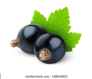 Isolated currants. Two black currant berries with leaf isolated on white background