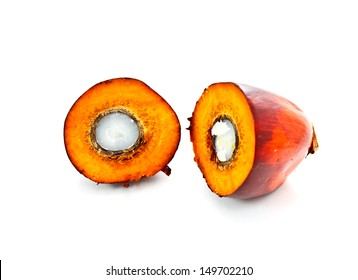 isolated cut oil palm fruit on white background