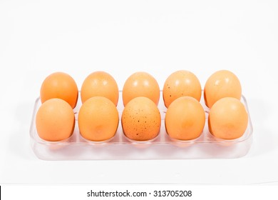 Isolated eggs in white background