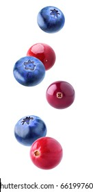 Isolated flying berries. Falling cranberry and blueberry fruits isolated on white background with clipping path