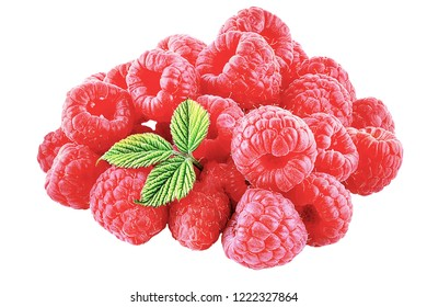 Isolated fruits. bunch of raspberries fruits isolated on white background with clipping path as package design element and advertising