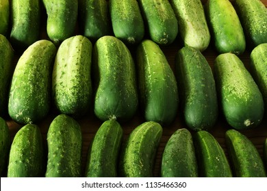 isolated green garden fresh cucumbers
