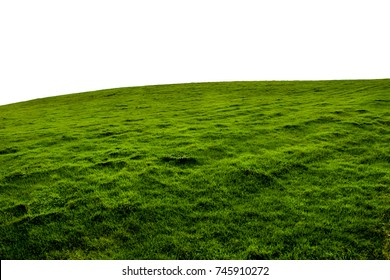 An Isolated green grass hillside