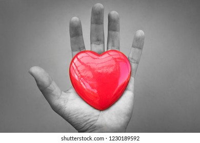 Isolated hand holding heart.  Giving love concept.