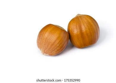 Isolated hazelnuts on white background