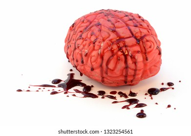 An isolated human brain with fake blood for use as a prop item.