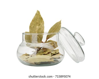 Isolated iamge of green laurel leaves in glass mug with lid on a white background.