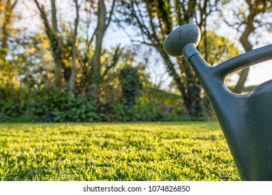 Isolated image of a generic plastic watering can used for adding fertiliser to a well-maintained lawn, seen just altering being cut during a summers evening.