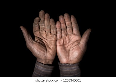 Isolated image of the hands of a man who is a farmer