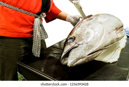 isolated image of japanese chef cut the giant yellow fin tuna and slice to make tuna sashimi