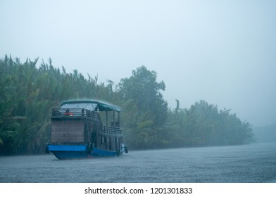 isolated kalimantan's house boat, riverboat, klotok, sailing on a river skirting palm trees and raining cats and dogs. Storm. Indonesian borneo. Tanjung Puting national park