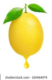 Isolated lemon. One fresh lemon fruit with a drop of juice isolated on white background