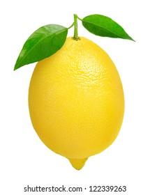 Isolated lemon. One lemon fruit with leaves isolated on white background