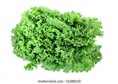 isolated lettuce on white
