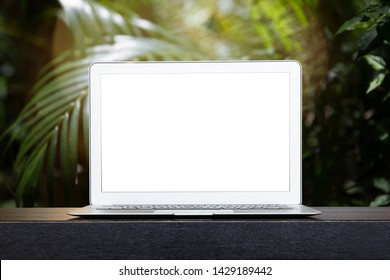 Isolated mockup image of laptop with blur on green plam leaves or tree in tropical forest with bokeh light at background - Using for Mock up template for display of your design.