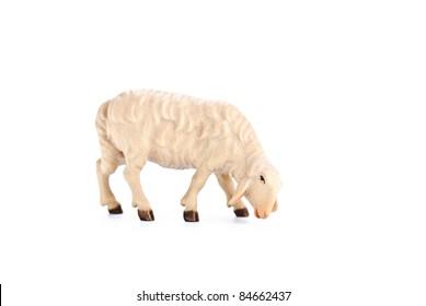 isolated nativity scene, lamb
