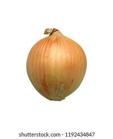 An isolated onion