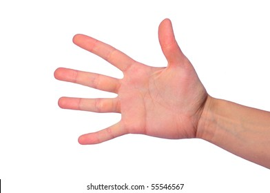 isolated open female's palm with five fingers