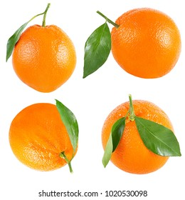 Isolated oranges. Collection of whole orange with leaf isolated on white background with clipping path as packaging design element.