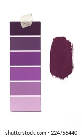 Isolated Paint Swatch and sample