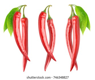 Isolated peppers collection. Pair of fresh red hot chili peppers on branches with leaves isolated on white background with clipping path