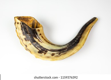 An isolated photo of a Shofar - A rams horn used to blow sounds on the Jewish new year ( Rosh HaShana) and the day of Atonement (Yom Kippurim)