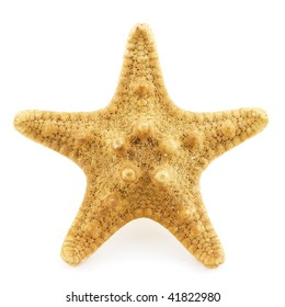 Isolated photo of an yellow sea star
