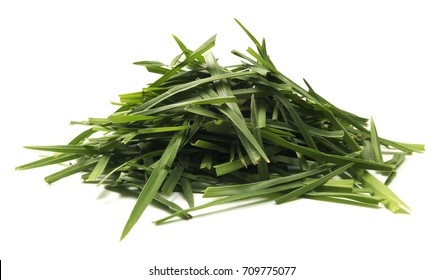Isolated Pile Of Grass
