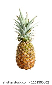 Isolated Pineapple against white background.
