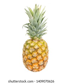 Isolated pineapple for your designs