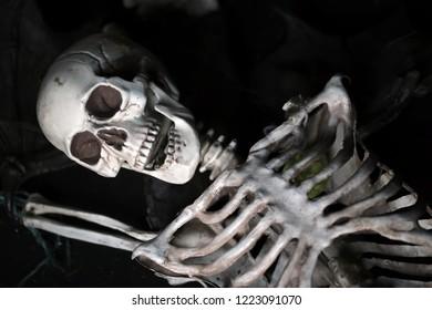 Isolated plastic toy skeleton on black background