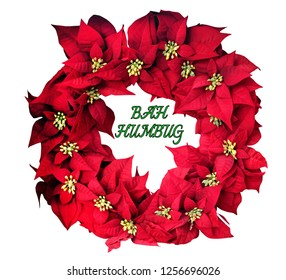 Isolated poinsettia wreath with humourous BAH HUMBUG sentiment. Isolated.