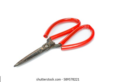 Isolated rusty scissor