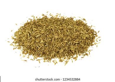 Isolated Ryegrass Seed Heap (Lolium).
