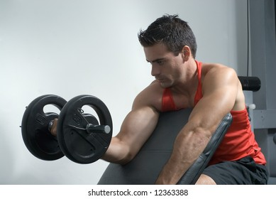 An isolated shot of male athlete curling a dumbbell, with his right arm.