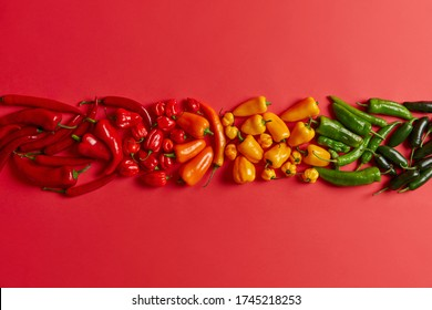 Isolated shot of red yellow green chili pepper arranged in one row against bright red background. Variety of spicy healthy vegetables for preparing tasty hot dish or spices. Creative composition.
