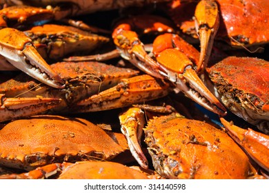 Isolated shot of steamed blue crabs