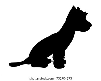 isolated silhouette small dog is standing