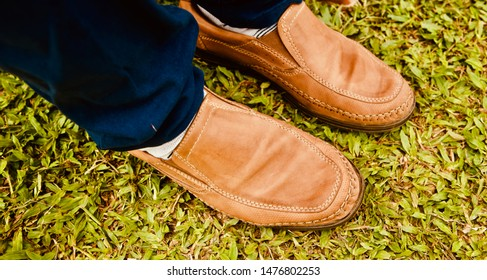 Isolated stylish brown leather shoes on a grassy surface