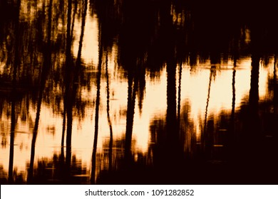 Isolated sunlight reflection and tree shadows in water unique background photo
