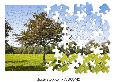 Isolated tree in a green meadow - environmental conservation concept image in jigsaw puzzle shape
