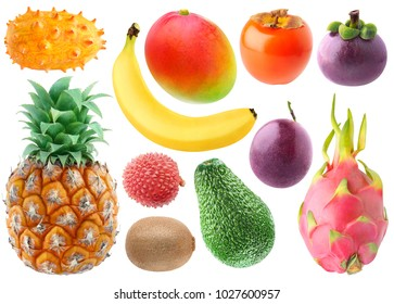 Isolated tropical fruits collection. Fresh kiwano, banana, mango, persimmon, mangosteen, pineapple, lichee, kiwi, avocado, passionfruit and dragonfruit isolated on white background with clipping path