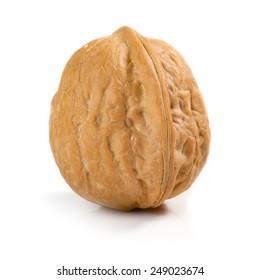 Isolated walnut on white background