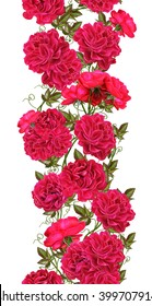 Isolated. White background. Vertical floral border. Pattern. seamless. Flower garland of red climbing roses.