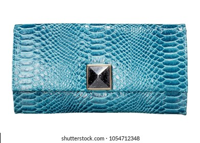 isolated women's clutch purse